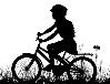 Verbod appen en gebruik telefoon op de fiets