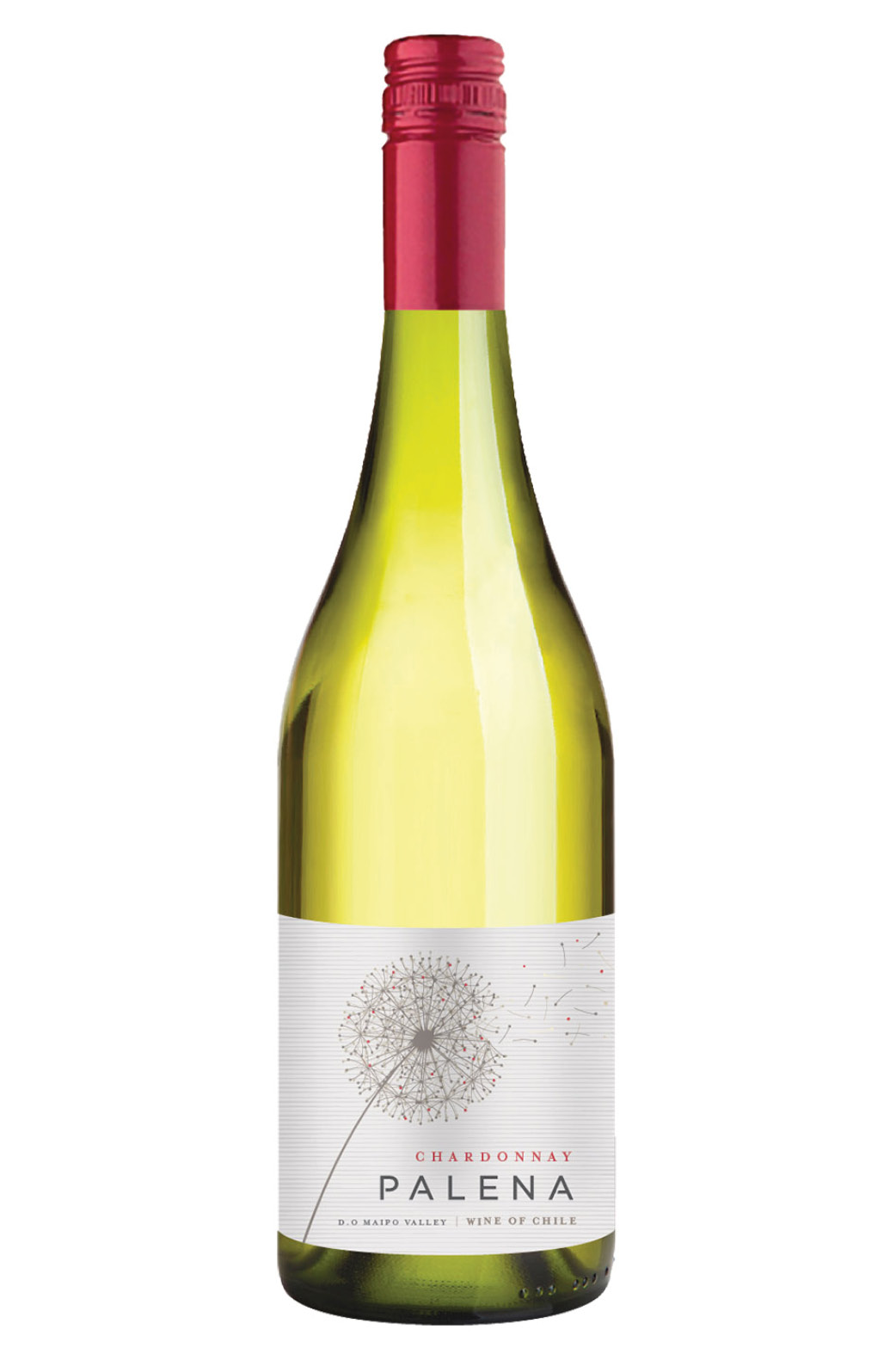 Palena chardonnay 2+1 gratis